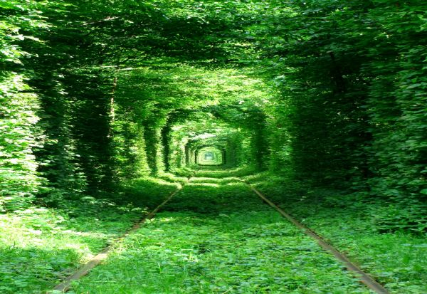 Tunnel of love, Klevan, Ukraine